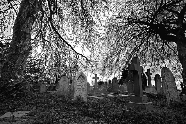 graveyard photography Thatched Roof, Graveyards Photography, 40 Haunted, Graveyards Epitaphs, Beautiful Photographers, Haunted Beautiful, Beautiful Cemetery, Beautiful Haunted, Tomb Graveyards