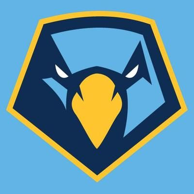 81 best hawks falcons logos images on pinterest sports logos rh pinterest com cool college basketball logos Custom Basketball Logos