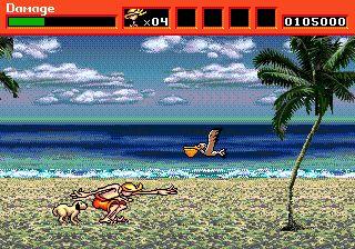 Example beach style from Greendog