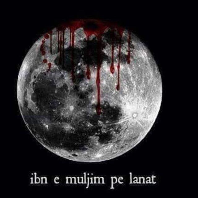 LABBAIK YA ALLAH | Hussainiat is Humanity LABBAIK YA HUSSAIN (a.s) ❤️❤️❤️ #Shia #ahlebait #ahlulbayt #ali #imamhussain #hussain #hussainiatishumanity #fatima #zahra #humanity #trueislam #hadith #quote #love #peace #trueislampath #mekkah #karbala #najaf #mashad #qom #quran #koran #bibifatima #alihaq #azadari #pakistan #labbaikyahussain #islam #waqeel_e_bibi_fatima_sa | SHARE & TAG YOUR FRIENDS | !!!