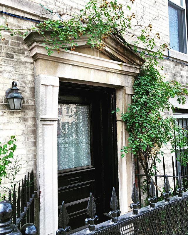 A splash of green 🌿🌿🌿 #historicdistrict #architecture #Brooklyn #BrooklynUSA #PLG #ProspectLeffertsGarden #ivy #climbingvines #doorway #tympanum #dentils