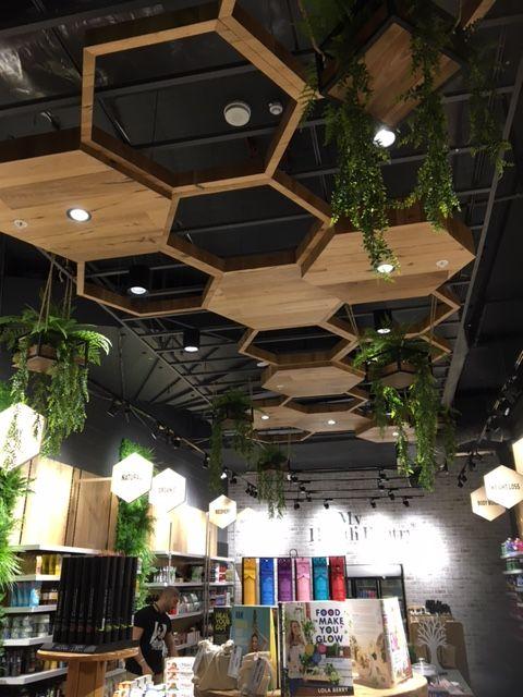 Honeycomb Ceiling Feature Below Black Exposed Ceiling