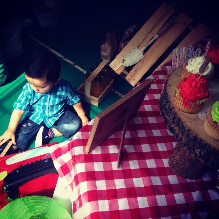 Cupcakes fiesta de 1 año picnic