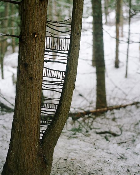 I love this. I love this. I love this. Imagine coming across something like this on your walk through the wood. Delightful!!