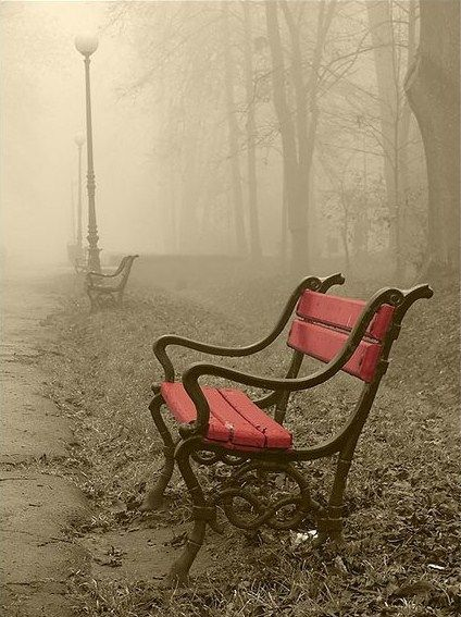 Red park bench in fog
