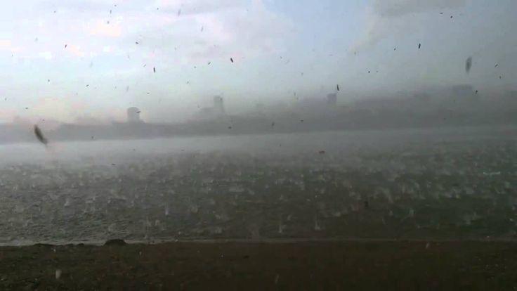 Ураган в Новосибирске 12 07 2014