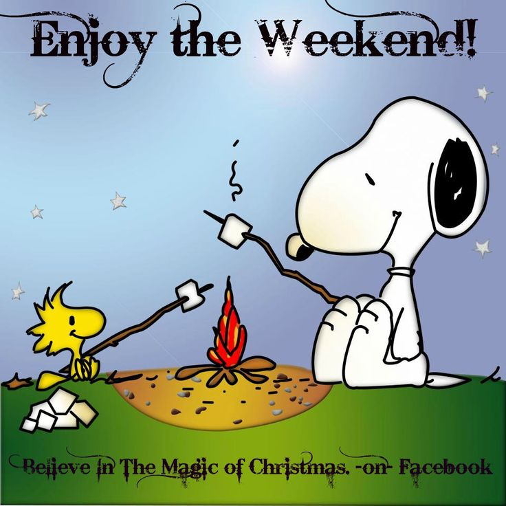 Snoopy enjoy the weekend