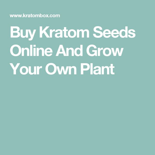 Buy Kratom Seeds Online And Grow Your Own Plant