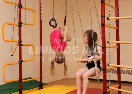 Limikids Home Gym