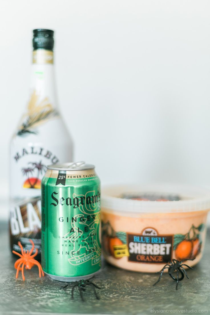 Hocus Pocus Potion - An easy (and yummy) alcoholic punch recipe for your Halloween party! www.thinkelysian.com