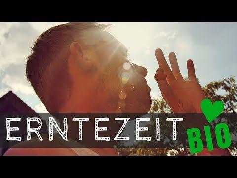 ERNTEZEIT + LIVE-Verkostung | Gartenrundgang 2016 BIO | Max GREEN - YouTube