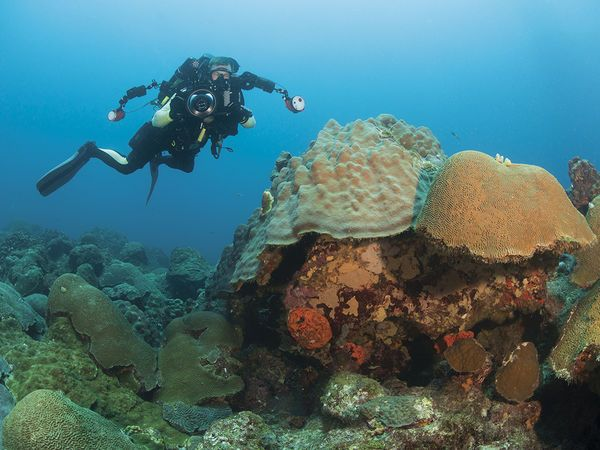 Two instructors debate what age is best to start kids on their way to dive certification.