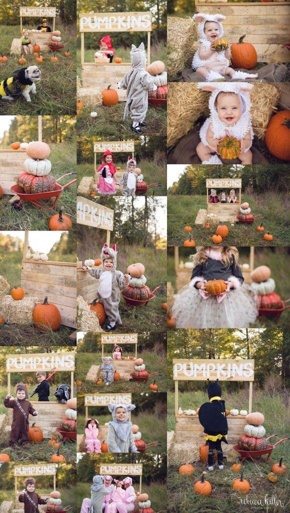 25 best ideas about halloween mini session on pinterest