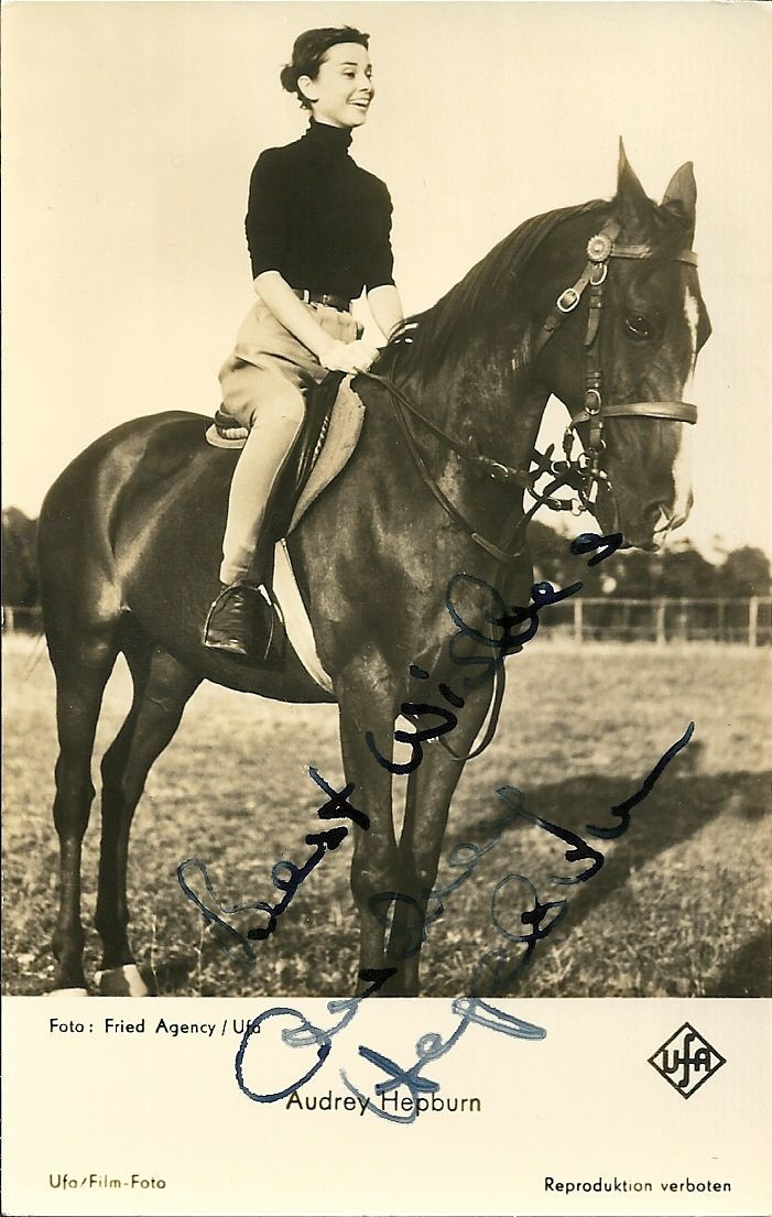 806 best Audrey Hepburn images on Pinterest Audrey hepburn