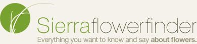 AWESOME website from my florist!! You can see different varieties of all sorts of flowers!!!  And find exact names!