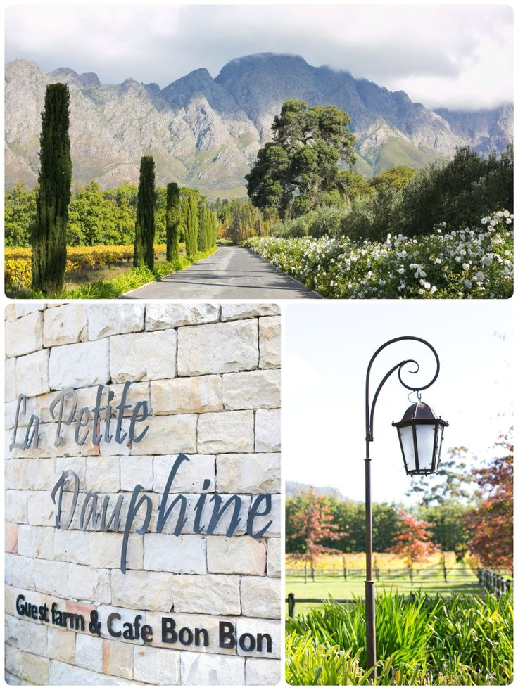 The entrance to our wedding venue - La Petite Dauphine in Franschhoek, South Africa (www.lapetite.co.za)