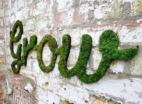 Une idée sympa pour décorer les murs de votre jardin ou de votre maison : les graffitis en mousse naturelle …