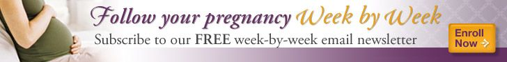 Ovulation | American Pregnancy on understanding ovulation