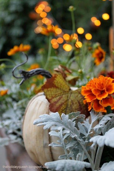 autumn garden holidays halloweenhalloween decorationshalloween