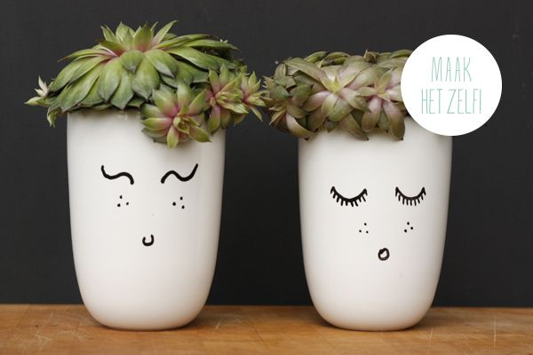 #DIT potted plants with personality. cute idea for a kids' room!