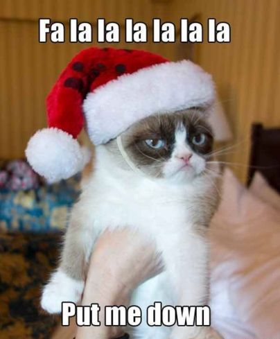Funny merry christmas memes hd free download for Facebook,pinterest and whatsapp. These hilarious jokes can also be shared on Twitter and with your best friends.