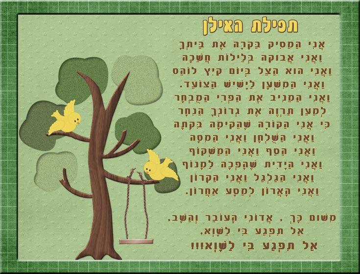 תפילת האילן - מנוקד