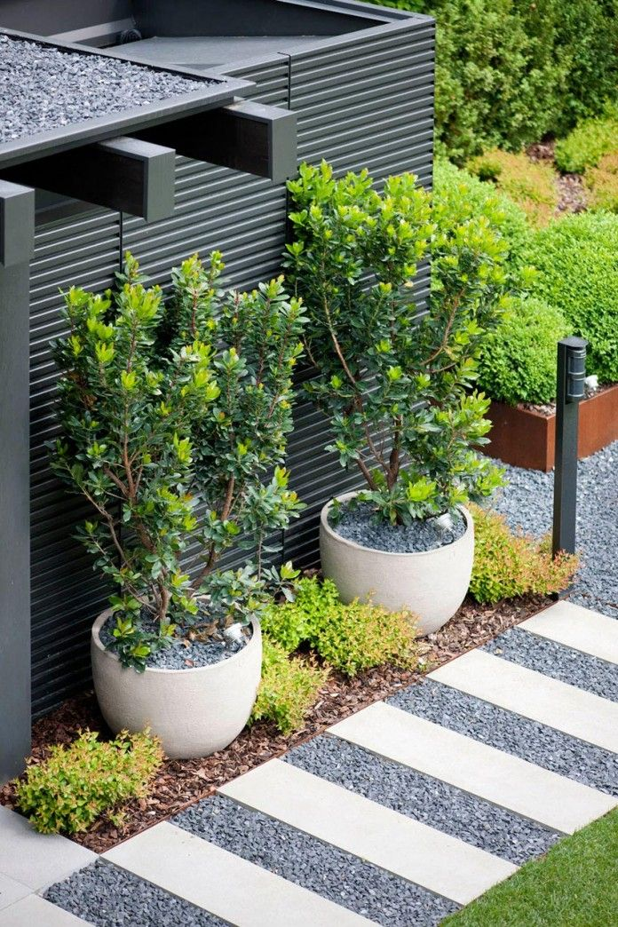 Large Garden Pots For Trees Part - 43: Large Round Pots With Trees