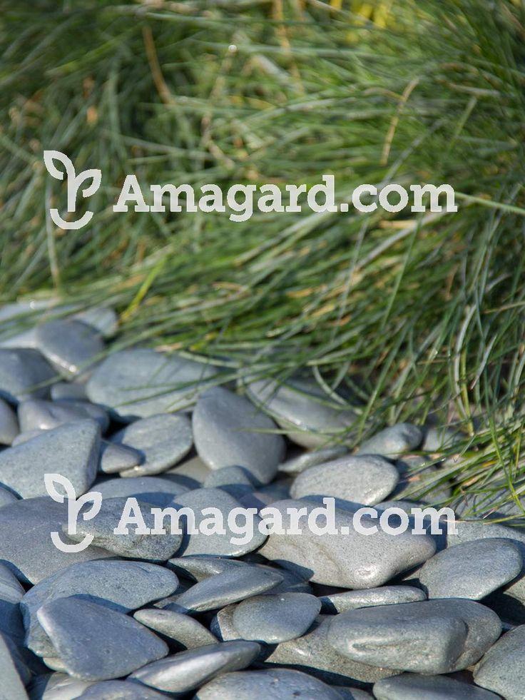 Flat pebbles groen zijn door de platte ronde vorm ideaal als sierpad of siervlakken. Door de groene kleur passen de flat pebbles prachtig in omgevingen die een rustige en natuurlijke uitstraling moeten hebben.
