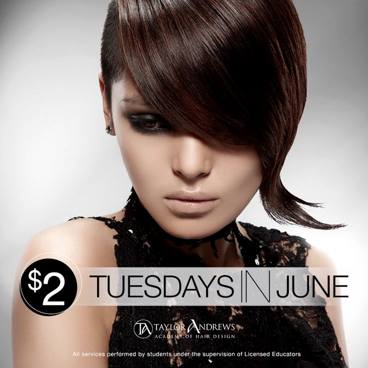 tuesday haircut special 38 best start dates images on dates dating 4666 | 4abf0e805b509fc6c5eadea466dfbe2f on tuesday your hair