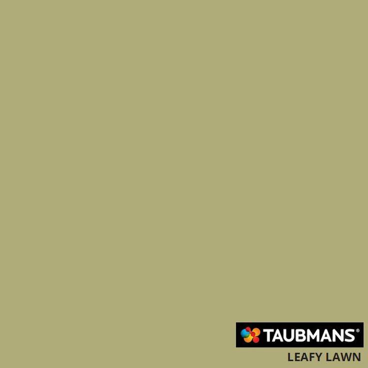 #Taubmanscolour #leafylawn