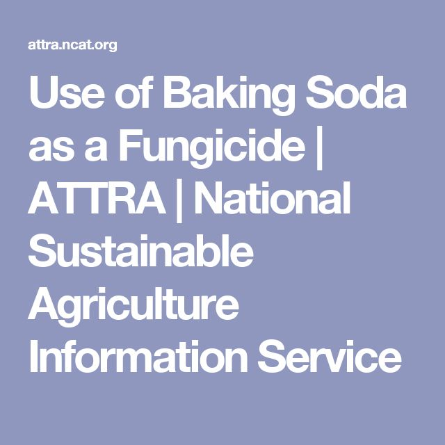 Use of Baking Soda as a Fungicide | ATTRA | National Sustainable Agriculture Information Service