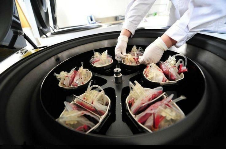6000rpm Blood Centrifuge Machine Centrifuge Blood Plasma Separator ...