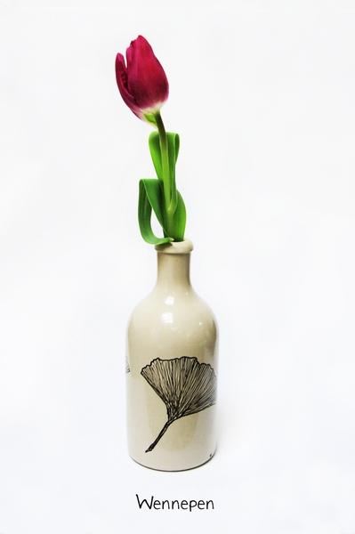 Een handbeschilderd aardewerk kruikje/vaasje.    Doordat ze met de hand zijn geschilderd is elk kruikje uniek.    De decoratie is vaatwasmachine be...