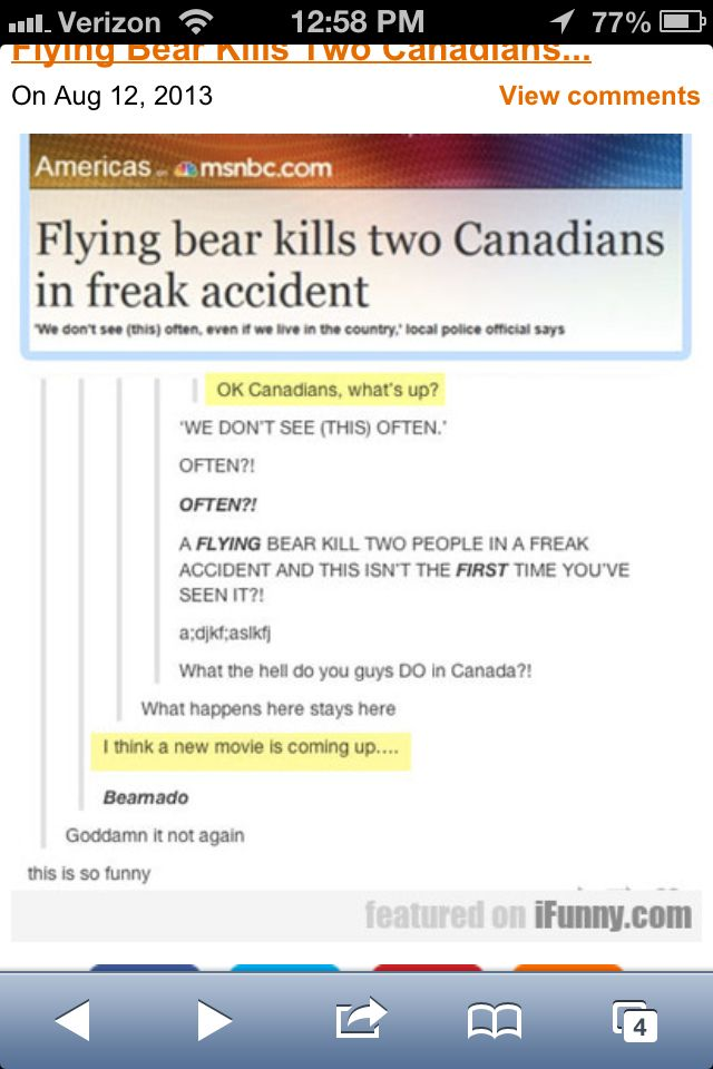 Canada is great: we have good laws, great food and (obviously) flying bear freak accidents