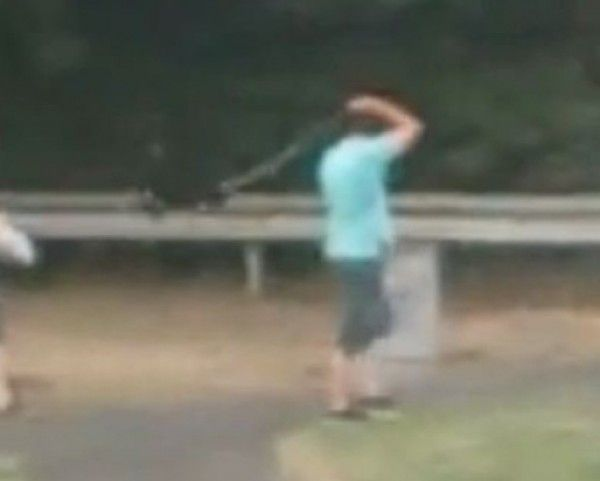Quick links to share the petition: Prosecute Stevenage man filmed while swinging dog on its lead around his head! | Yousign.org