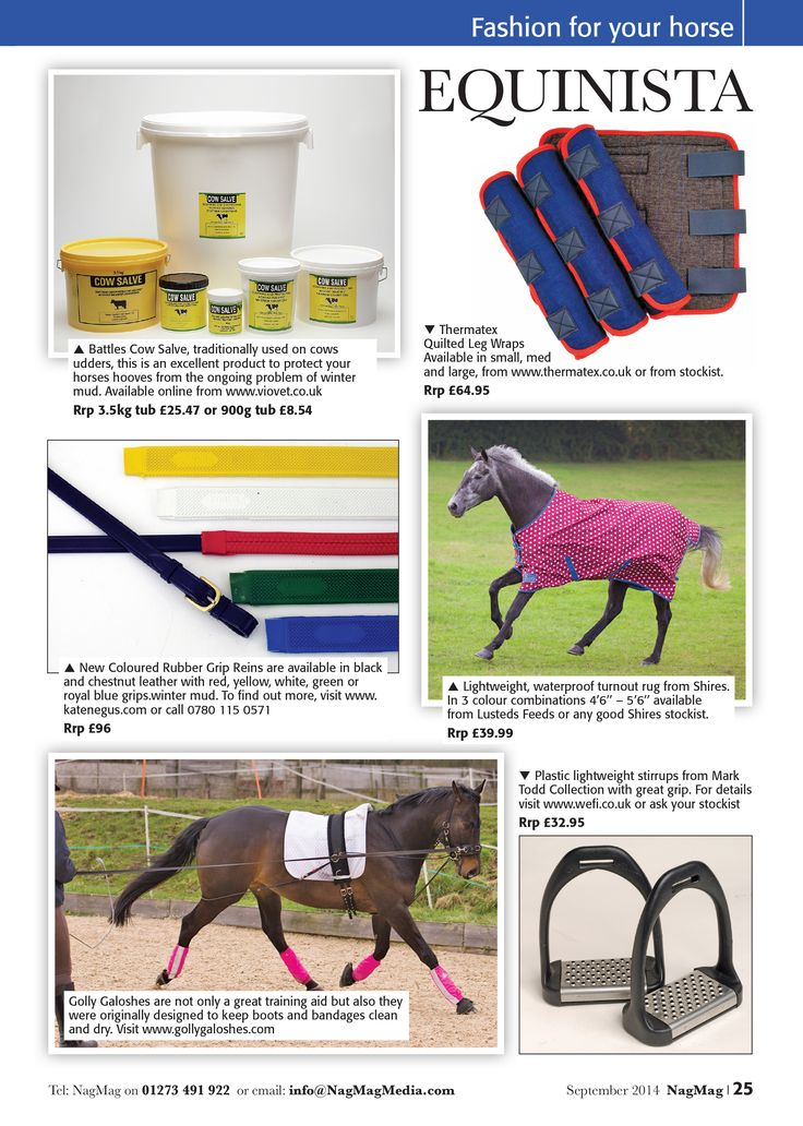 For Your Horse Protection Against The Elements
