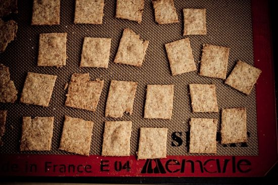 Homemade Wheat Thins — Oh She Glows