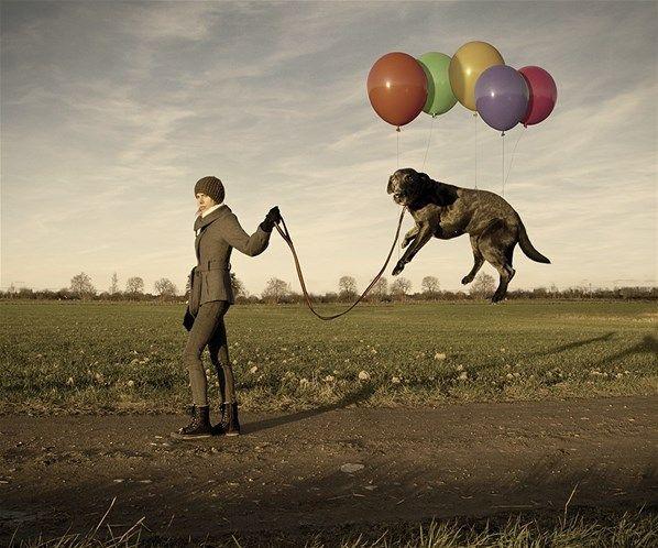 Fotograaf bewijst: niets is onmogelijk (9) - Het Nieuwsblad
