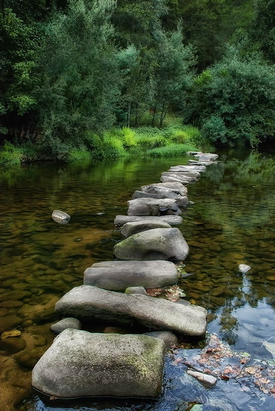 Stepping stones, creek.