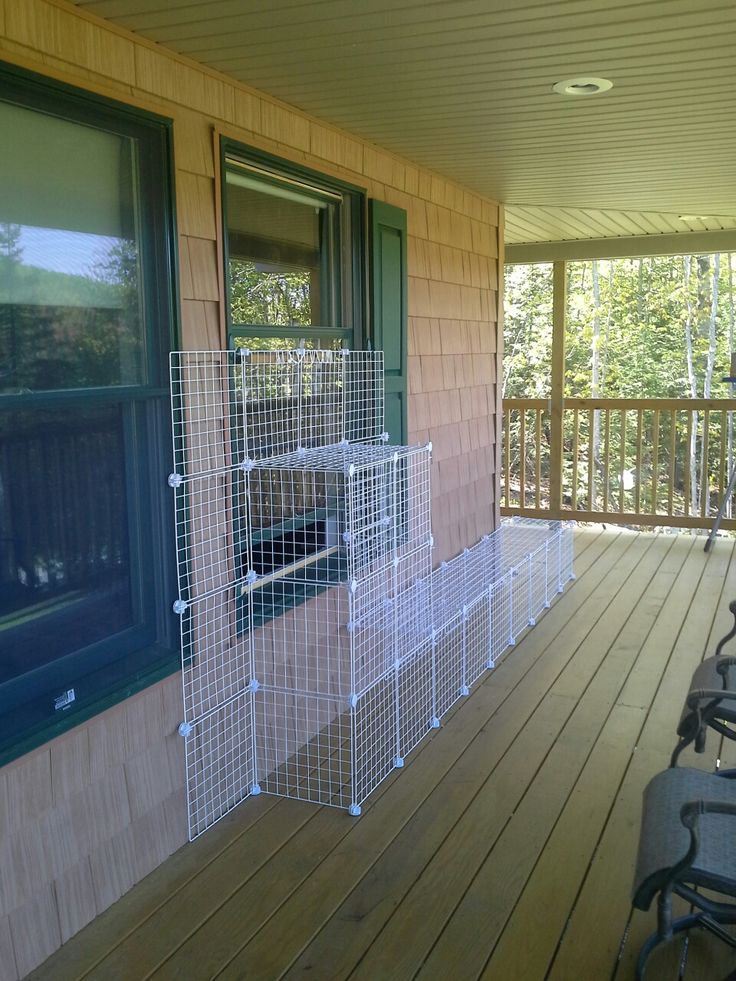 Catio - a pinterest success!  Working well! Goes around the side about 4 feet.  Secured with zip ties.  Escape proof and cats love it.  Total of about 75$.  Still need a screen to keep out the flies.