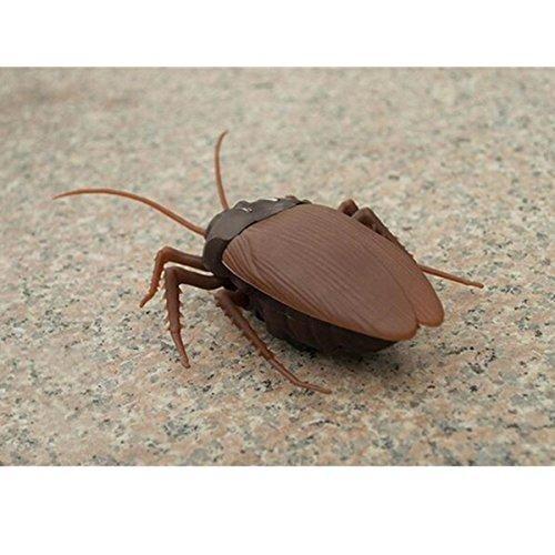 ¡PUAJ!Si os da asco la foto imagina en directo...Cucaracha a control remoto. ¡Siembra el pánico en cualquier sitio! ¡PUAJx2!