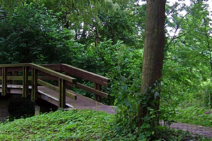 Gaasperplas Park (Gaasperpark) is not just another city park. It's located on the outskirts of Amsterdam and despite the numerous pathways and benches has kept its wild charm. A large part of the p…