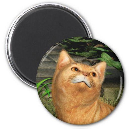 Ginger Cat 1 Fridge Magnets
