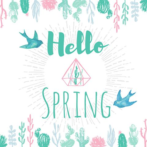 Hello Spring social media greeting template with succulent plants and cute birds. Created by ArtnerDluxe in Canva.  Customize your own version @ https://www.canva.com/artnerdluxe. Art elements © ArtnerDluxe www.artnerdluxe.com