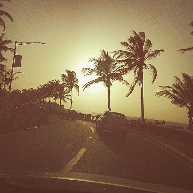 Driving on the coastline into old San Juan. Can't believe I caught such an awesome picture of the Sun behind the palm trees. #puertorico Steve Cardenas Photo (Rocky, Power Rangers)