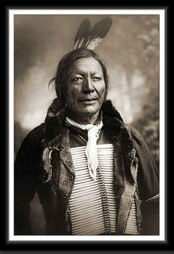 Chief Fire Lightning, Oglala Sioux. 1891. – Nordseeindianer
