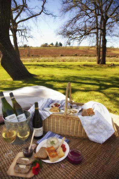 25 of the best pre-ordered picnics in the Cape Winelands