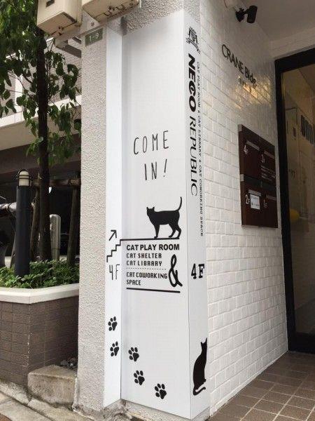 人生を共にする猫と出会える、保護猫カフェ「ネコリパブリック東京」訪問記 | 猫ジャーナル
