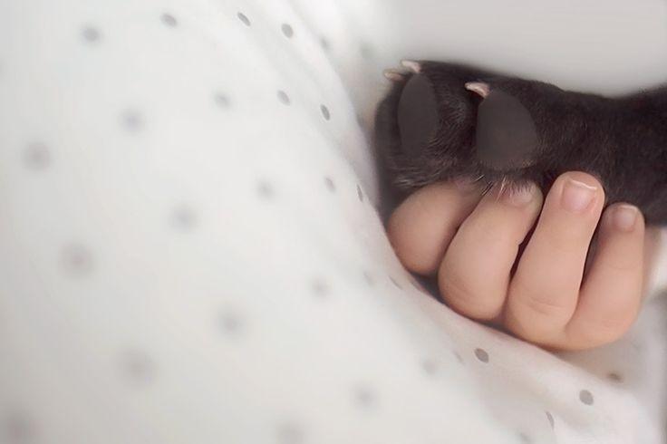 Birbirlerini kardeş zanneden bebek Dilan ve yavru bulldog | Gaia Dergi