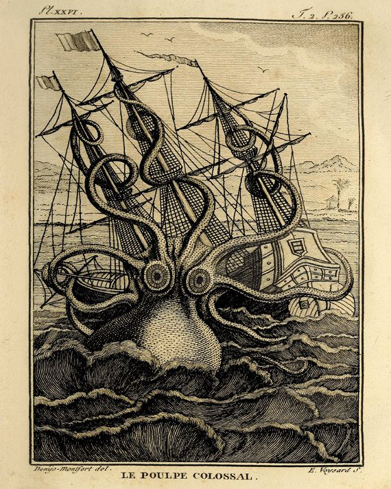 Octopus art large art print old prints nautical art print for Vintage ocean decor